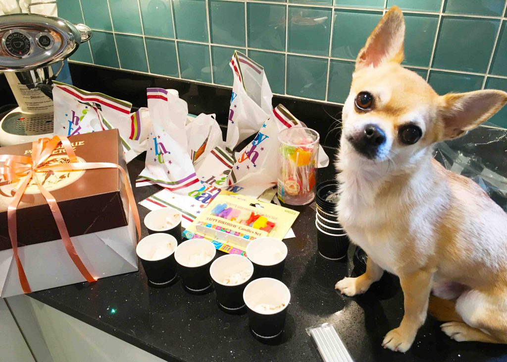 Home made doggie goodie bags