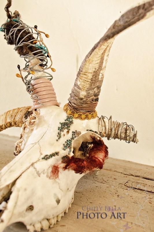 Decorative Skulls 002