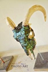 Decorative Skulls 012