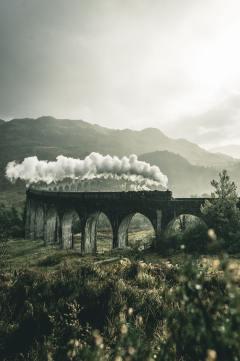Harry Potter's inheritance