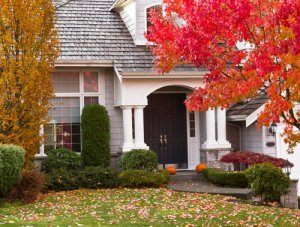 house behind orange and yellow trees