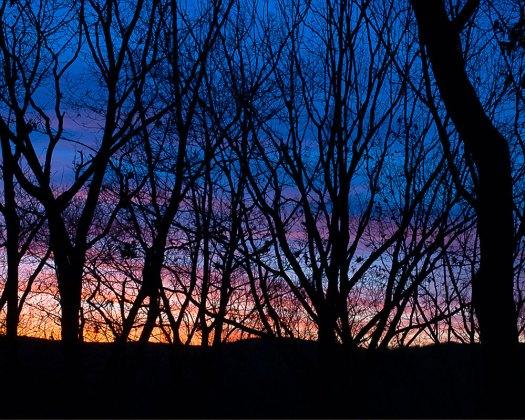 Winter Sunset | Minimally Invasive