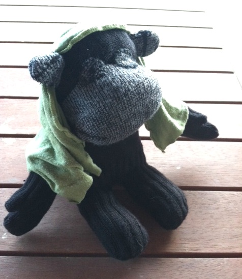 Negra sock chimpanzee