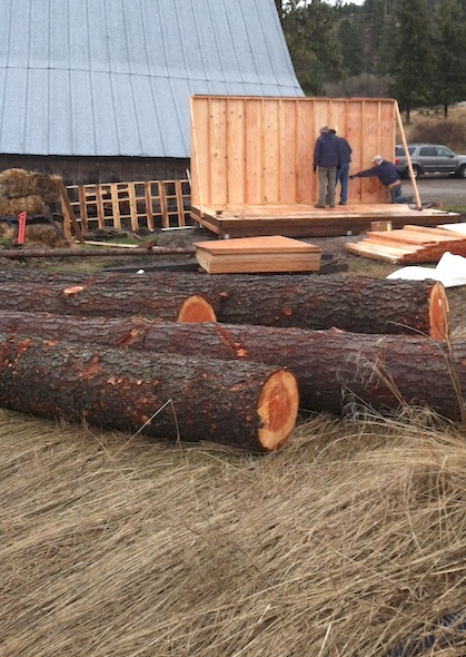logs in front of shed construction