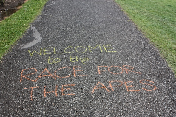 chalk welcome