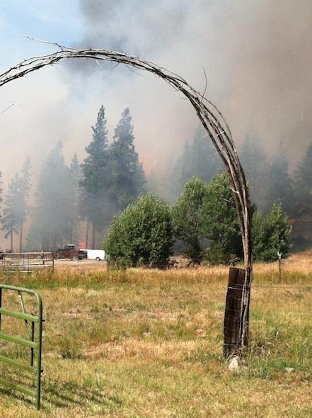 fire on Tom's property