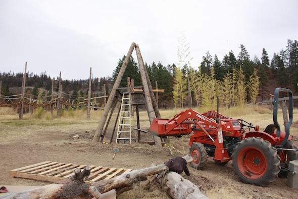 negra's cabin under construction