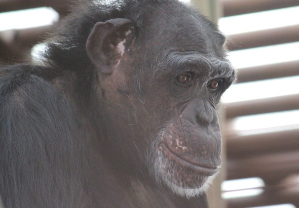 Jamie profile  close up