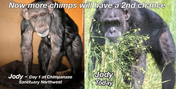 Jody before and today