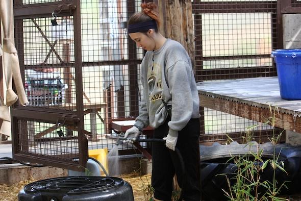 web becca volunteer clean GH (ek) IMG_2084
