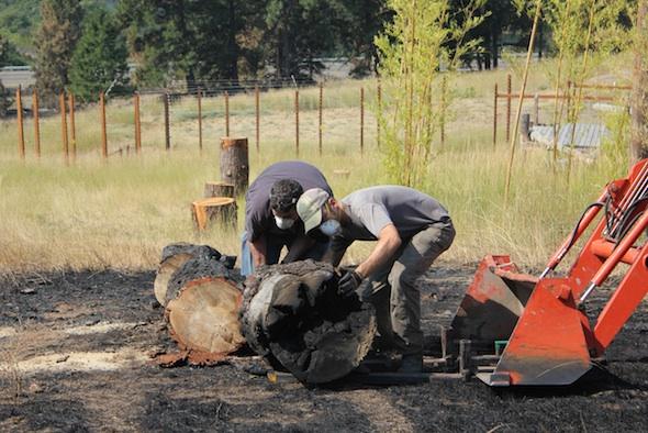 web_fire clean up JB caregiver brian volunteer tractor load burned log yh IMG_6415