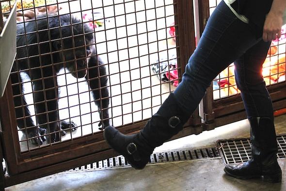 web_Jamie_inspect_staff_caregiver_Debbie_boots_PR_ek_IMG_0031