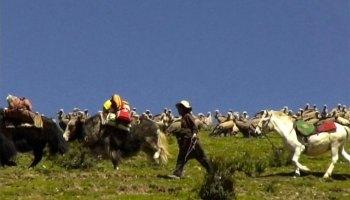 Sky Burial: the Tibetan ritual dissection