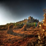 Wild Stone Forest in Kunming Yunnan