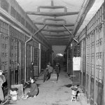 chinese-funeral-parlor-002