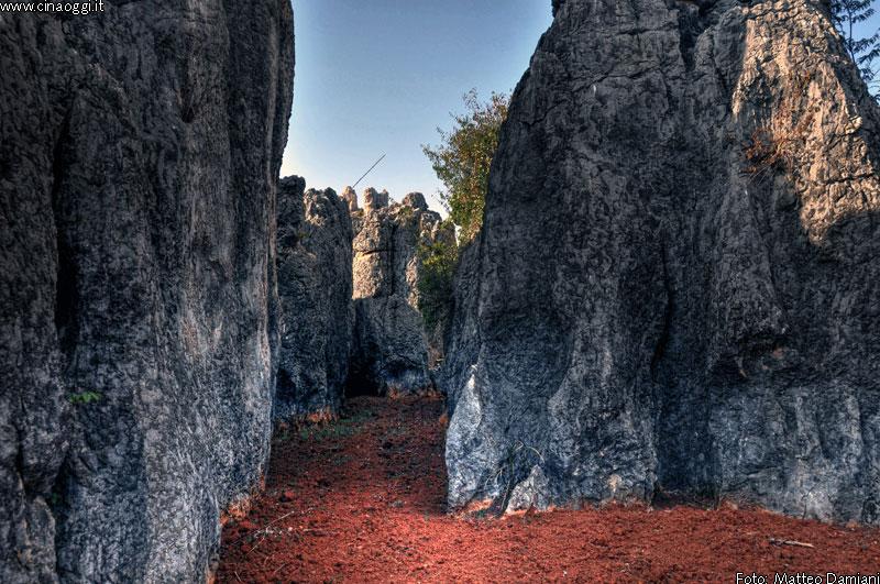 Wild Stone Forest in Yunnan