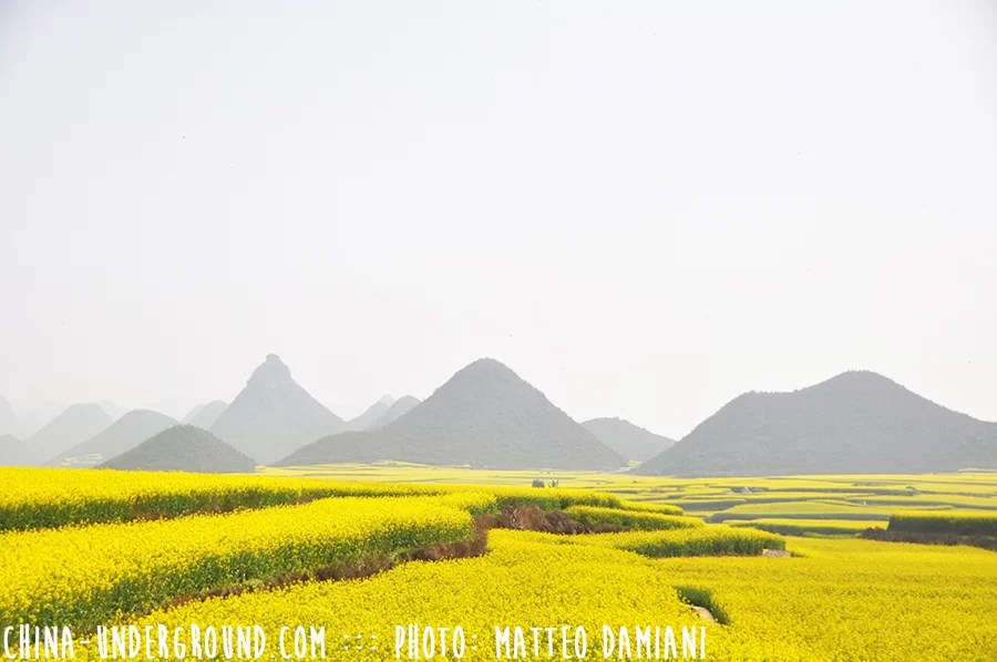 Luoping-005