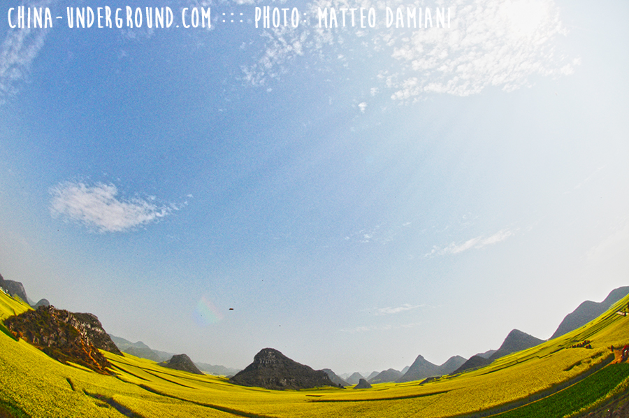 Waterfall Amazing Rapeseeds Fields of Luoping, China