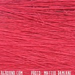red-rope-buddhism