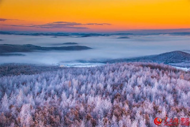 Dahinggan forest