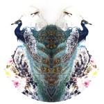 Anita Wong-contemporay Chinese artist