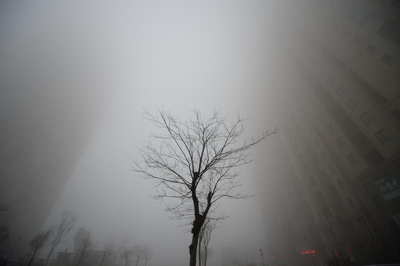 China plans emissions cuts
