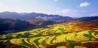Terrace fields of Yuxi