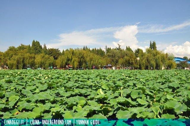 Trip to Daguan Park, Kunming, Yunnan