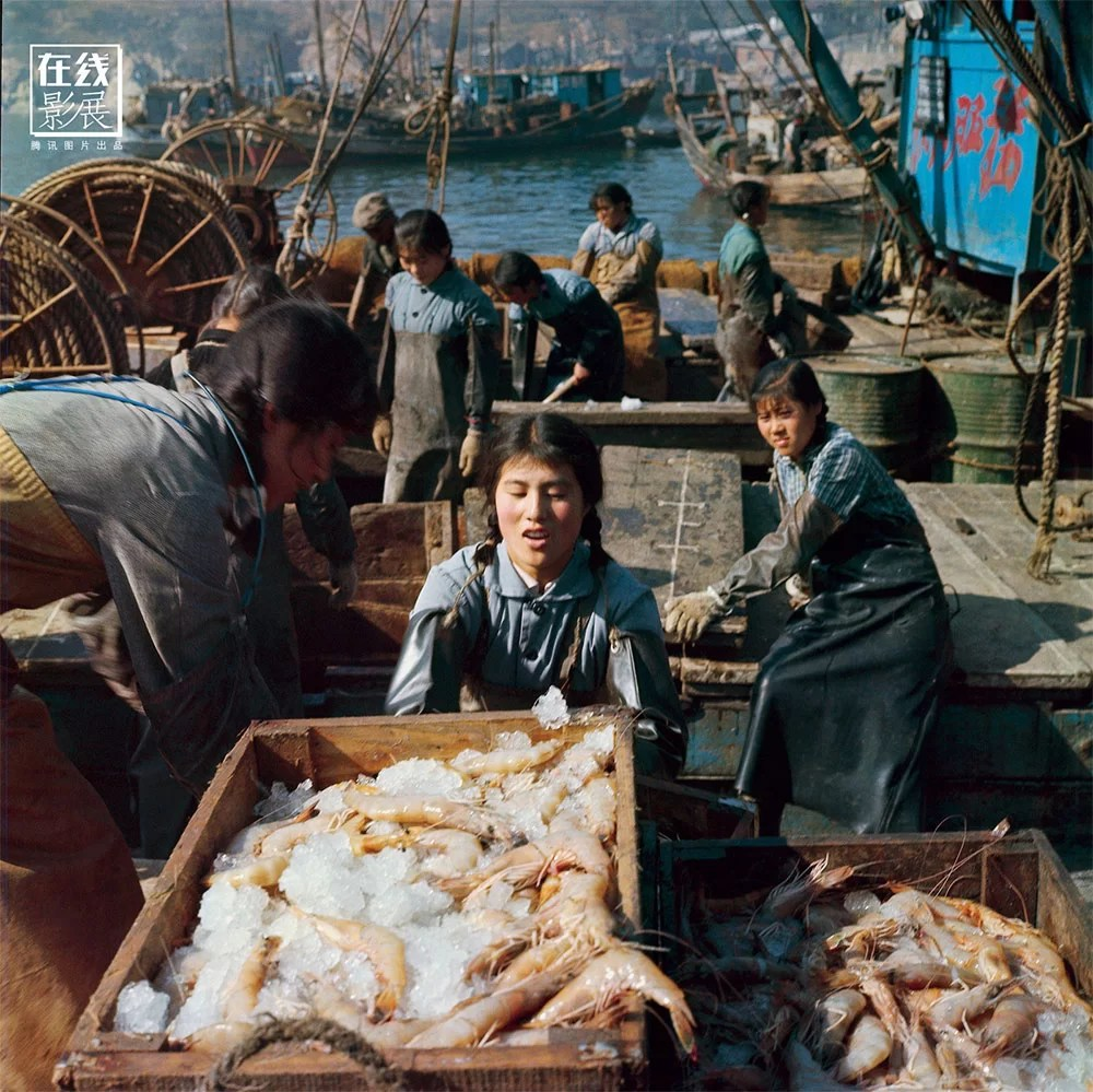 """1971. On the island of Weichangshan, in front of Dalian, in 1958, a group of women, breaking the Chinese traditions, decided to go fishing, with excellent results. In 1962, the """"March 8"""" was the first vessel to sail driven by a woman captain, Wen Shuzen. In 1971, the March 8 captured a record amount of shrimps. The export of shrimps at that time represented an important economic resource for China."""