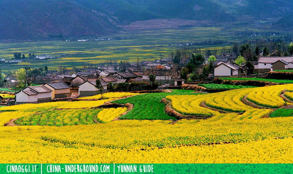 Dali Bai village