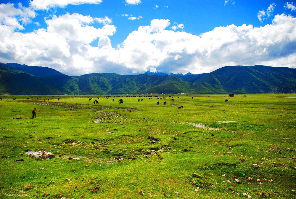 Lanyue Valley Scenic Region in Shangri-la