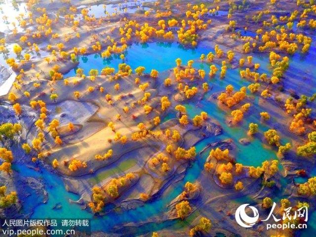 Tarim-River