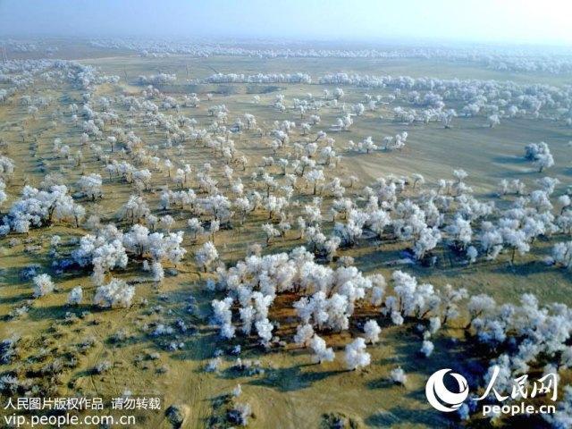 Xinjiang-Taklimakan-Desert