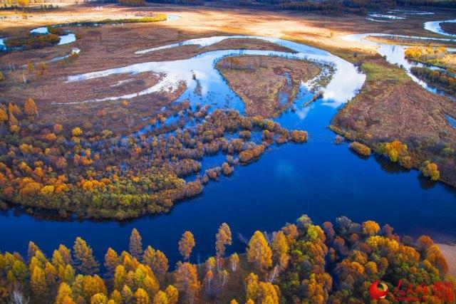 wetland-ecosystem