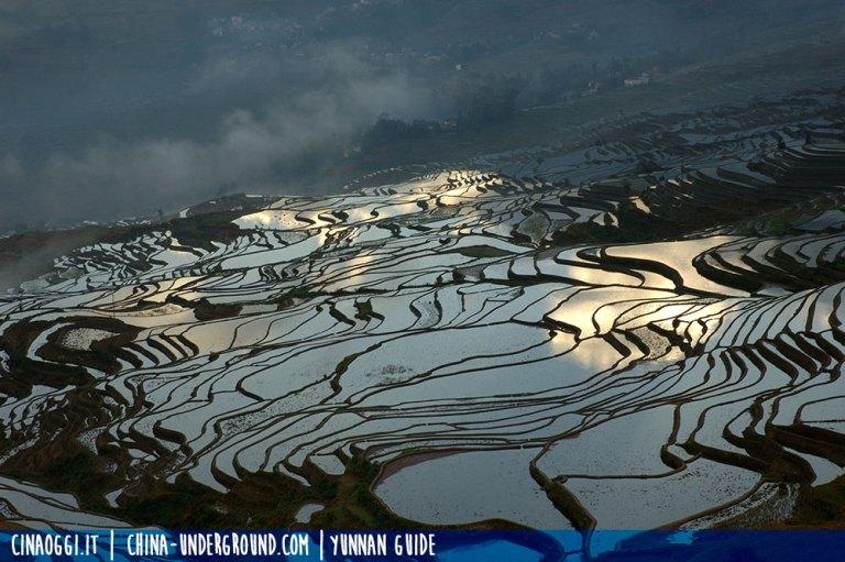 jiayin terraced fields