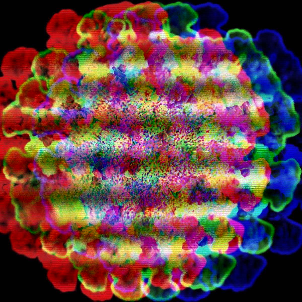 covid-19 origins coronavirus mission to china