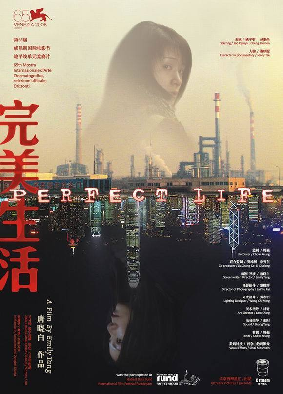 """Poster for the movie """"Perfect Life"""""""