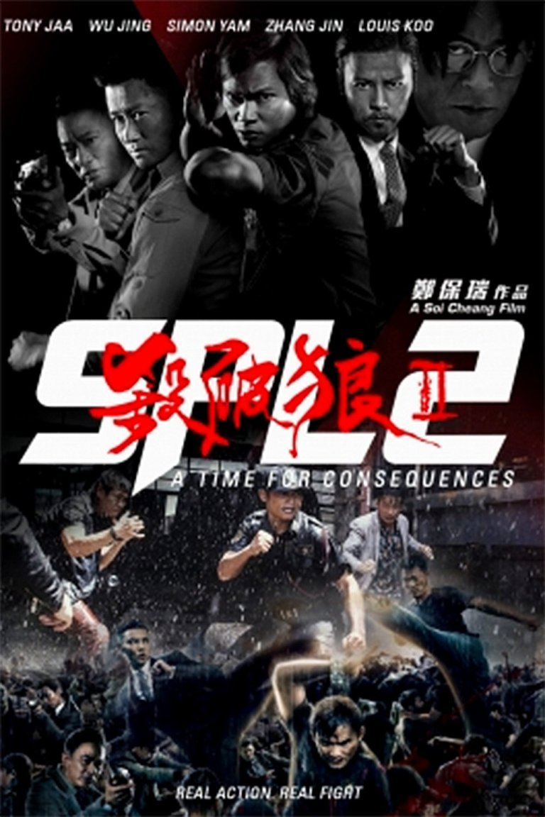 """Poster for the movie """"SPL 2: A Time for Consequences"""""""
