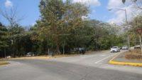 政府将改善Amador长堤交通指标摆置