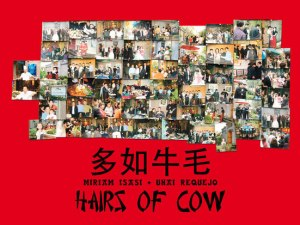 Pelos de Vaca / Hairs of Cow / 多如牛毛