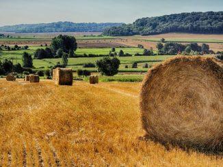 Terre-agricole-en-Allier