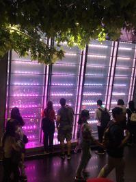 WeChat Image_20170601190641