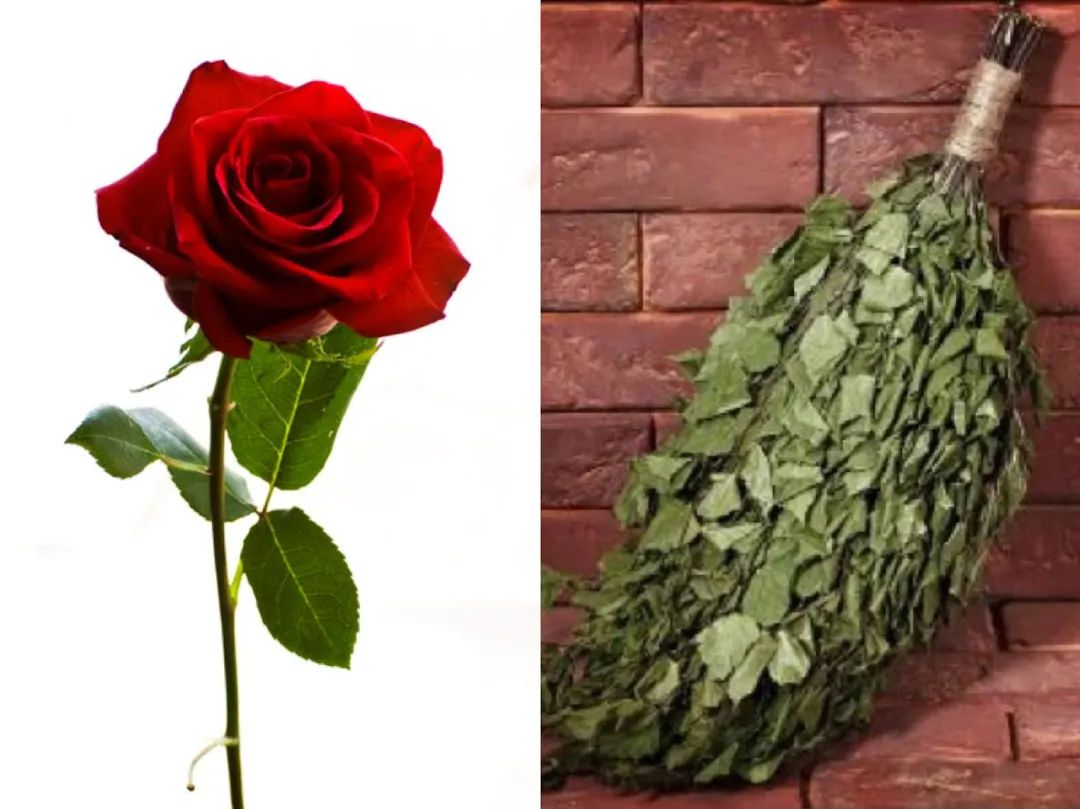瑞典抗疫中与众不同的独特性,招致扫帚与玫瑰一齐飞来