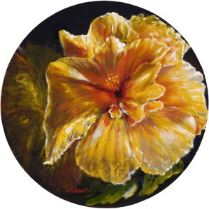 Hibiscus in Morning Light 3 by Chinwe Chuckwuogo-roy