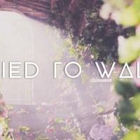 TRIED TO WALK