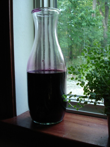elderberry-juice