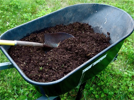 wheelbarrow-of-compost