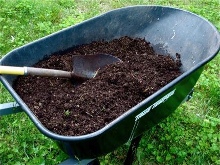 wheelbarrow-of-compost