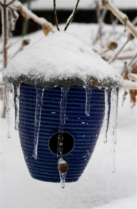 bird-house-with-icicles