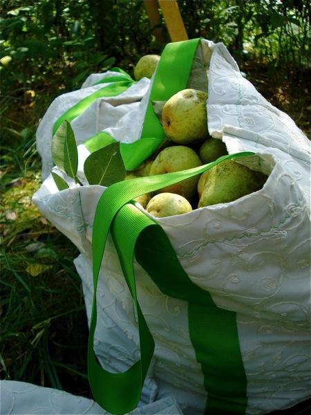 pears-in-a-bag